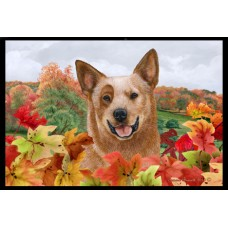 Fall Floor Mat - Red Australian Cattle Dog