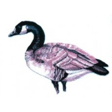 Embroidered Canadian Goose BT3903