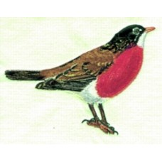 Embroidered Robin BT2822