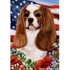 Indoor/Outdoor Flags - Blenheim Cavalier King Charles Spaniel