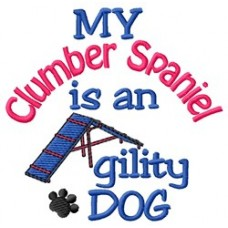 My Clumber Spaniel is an Agility Dog