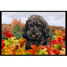 Fall Floor Mat - Black Cockapoo