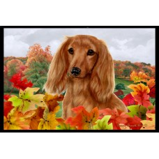 Fall Floor Mat - Red Longhaired Dachshund