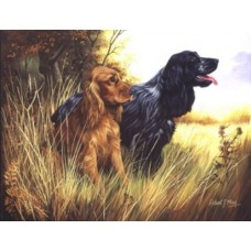 Robert J. May Open Edition Print - English Cocker Spaniel 7