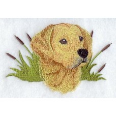 Embroidered Golden Retriever A5968