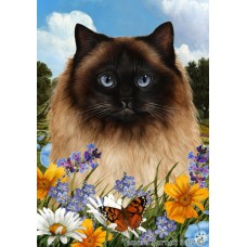 Indoor/Outdoor Summer Flag - Himalayn Cat (TB)