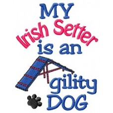 My Irish Setter is an Agility Dog