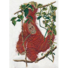 Embroidered Baby Orangutan O1003