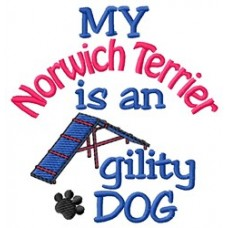 My Norwich Terrier is an Agility Dog