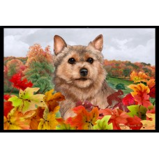 Fall Floor Mat - Norwich Terrier