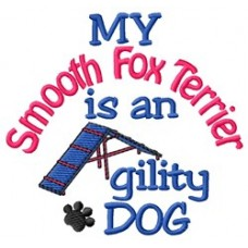 My Smooth Fox Terrier is an Agility Dog