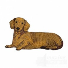Embroidered Dachshund AD009