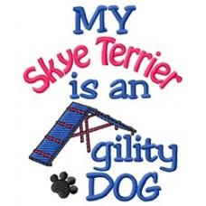 My Skye Terrier is an Agility Dog